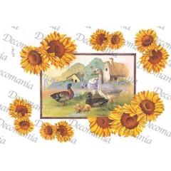 Carta per decoupage con girasoli e paesaggio oche Evasioni - serie 5 cod. S1253