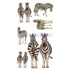 Decor 3D adesivo per vetro e ceramica zebre