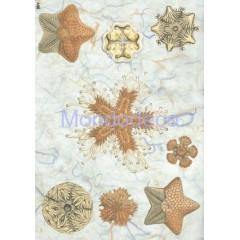 Carta di riso disegnata per decoupage con stelle marina e soggetti marini