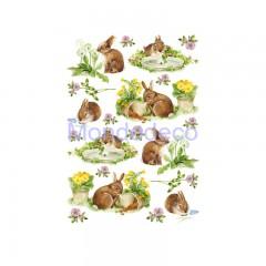 Carta di riso disegnata per decoupage con piantine e coniglio