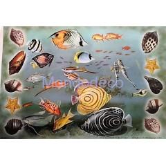 Carta per decoupage con pesci e conchiglie