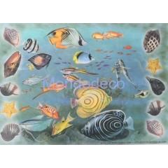 Carta di riso disegnata per decoupage con pesci misti