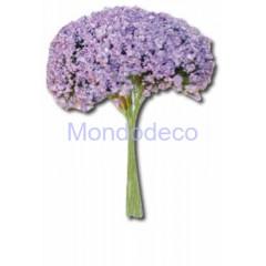 Mazzetto -  Gipsofila lilla SF107