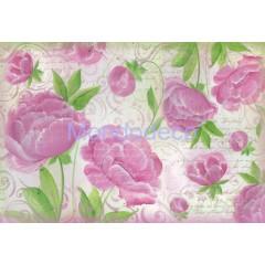 Carta di riso disegnata per decoupage con  texture di Rose dipinte DFS269